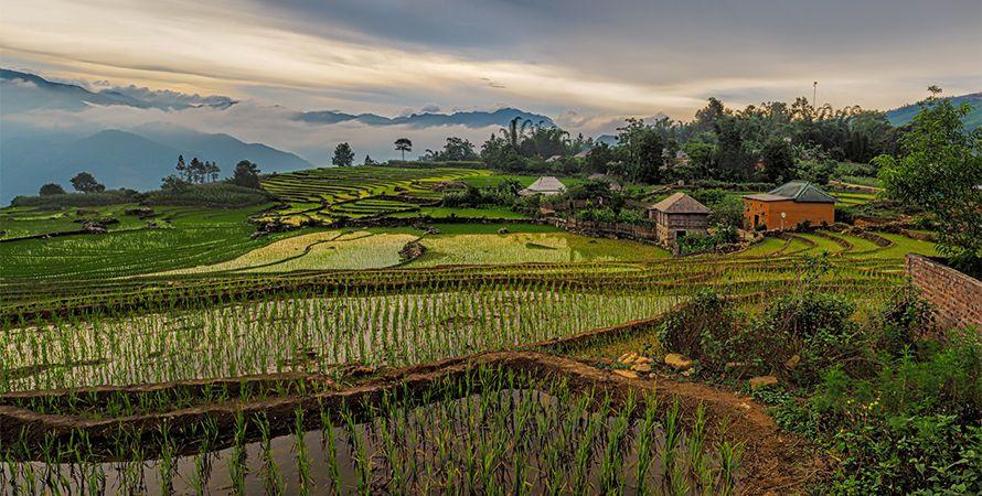 Civilización Vietnamita