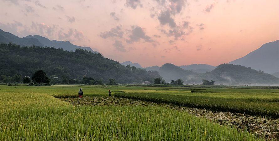 Viajar a Vietnam en Febrero