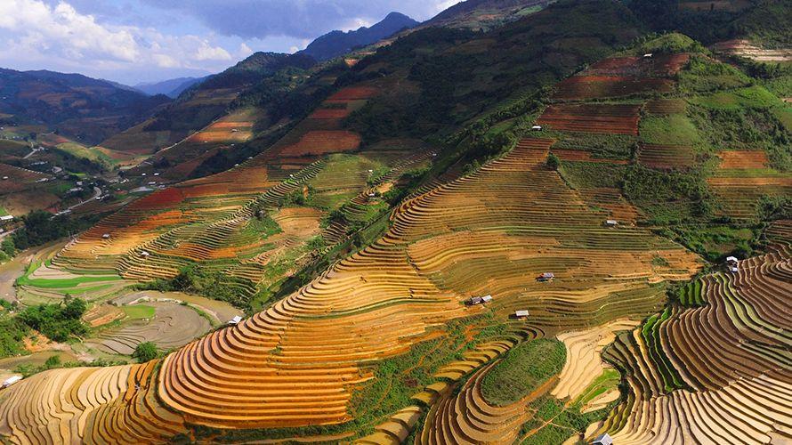 Cuándo viajar a Vietnam