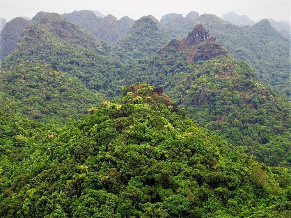 Cát Ba National Park, Vietnam