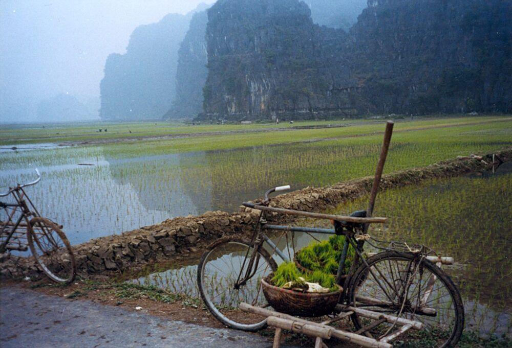 Hoa LuDistrict en Vietnam