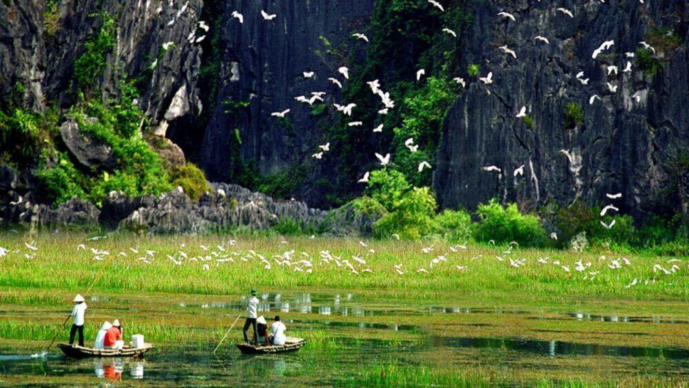 Thung Nham Bird Garden, Vietnam