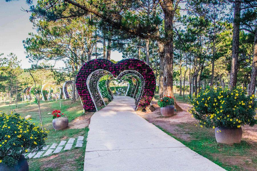 Valley of Love, Vietnam